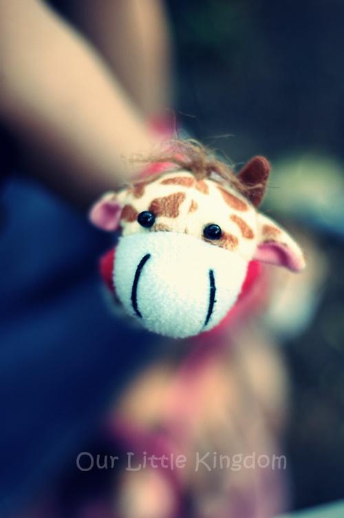Kirana's giraffe